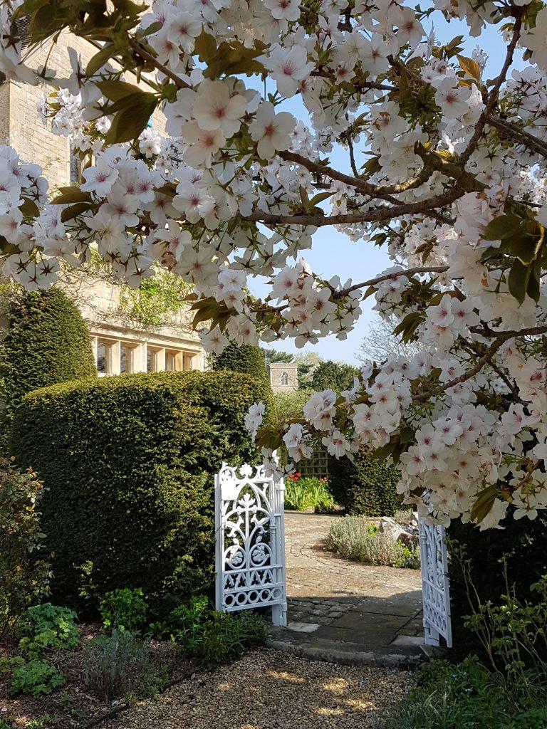 Garden Image 038