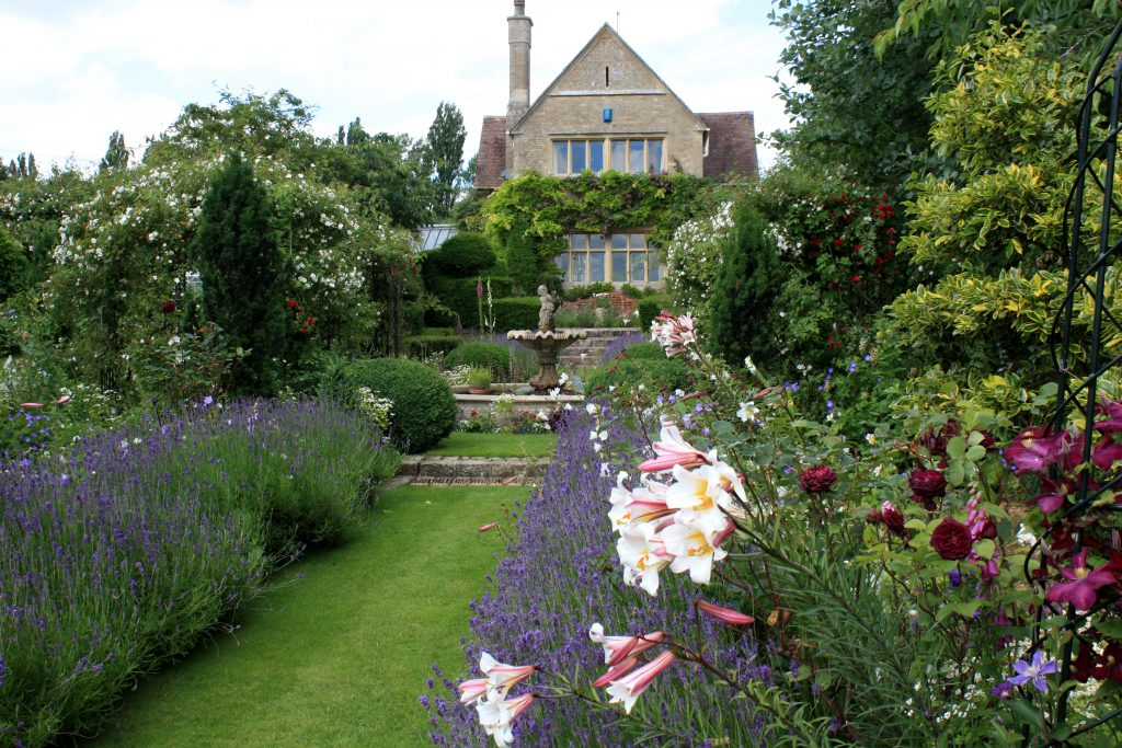 Formal garden Lavender and lilies