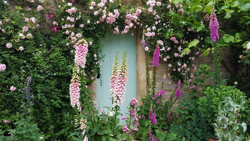Image of a doorway with roses surrounding.